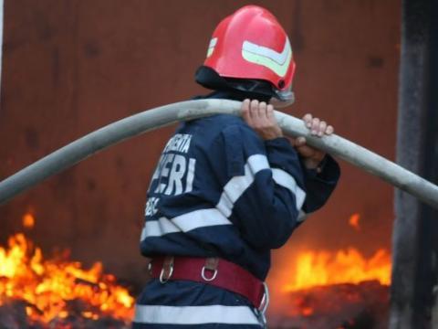 15 mii de pui mistuiți de un incendiu.10 mii de pui au fost salvați de pompieri